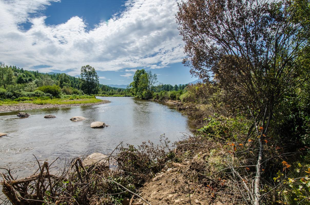 Riverlands after
