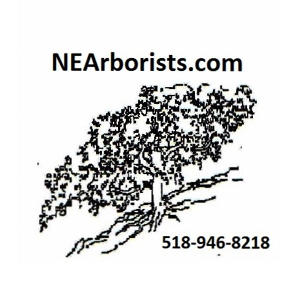 Northeast Arboricultural Associates