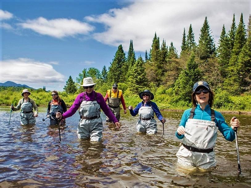 people in waders walking in wilderness river