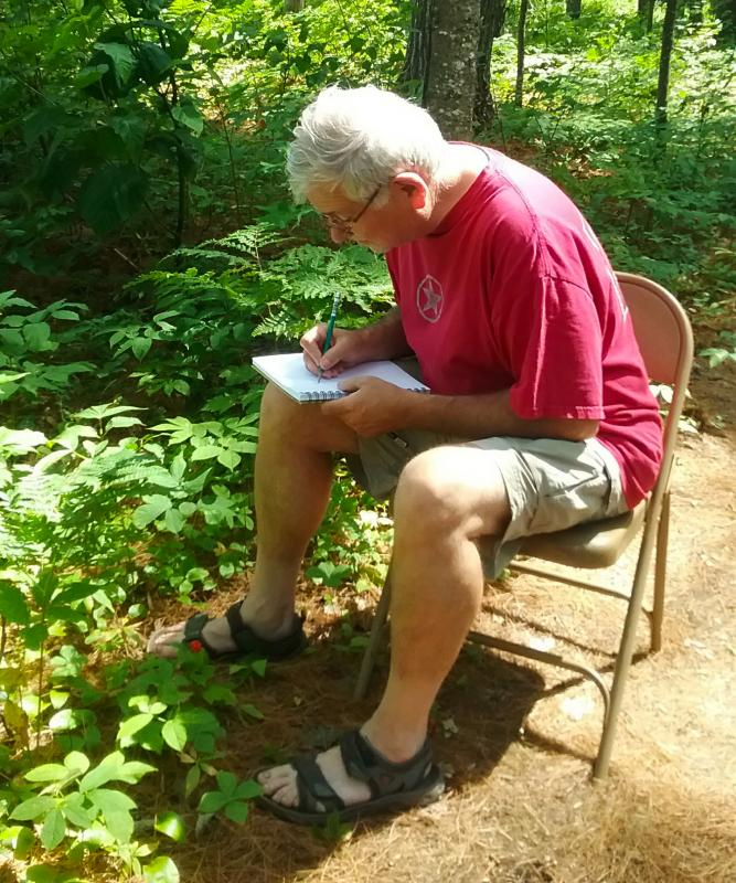person sitting in green forest drawing plants