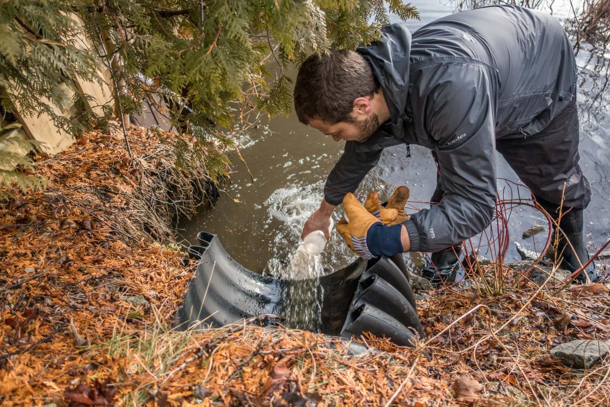 Stormwater Outfall Sampling on Mirror Lake