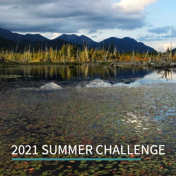 Rise to the Summer Challenge