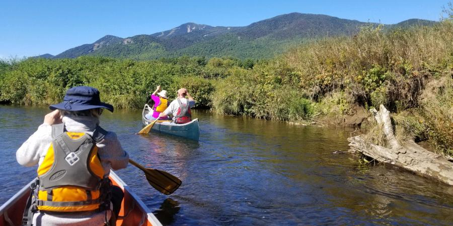 People paddling in canoes with mountains in the background
