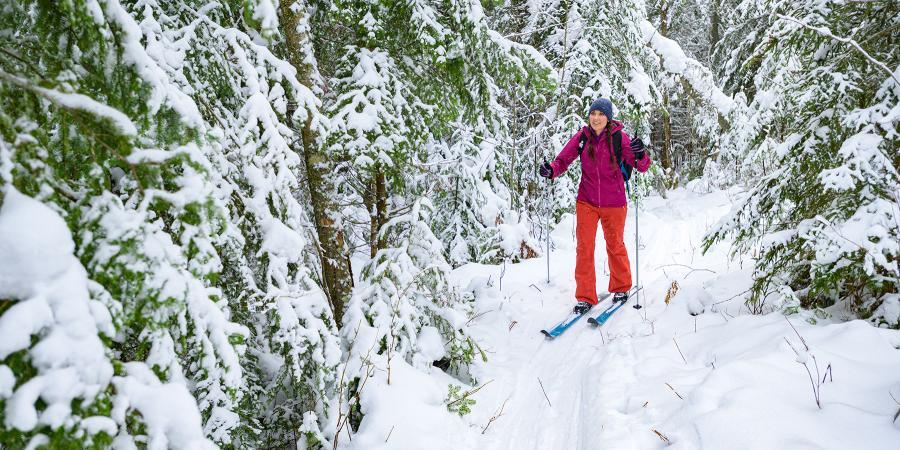 Woman in brightly colored clothing cross country skiing through snowy forest