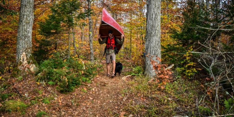 Person carrying a red canoe through an autumn-colored forest.