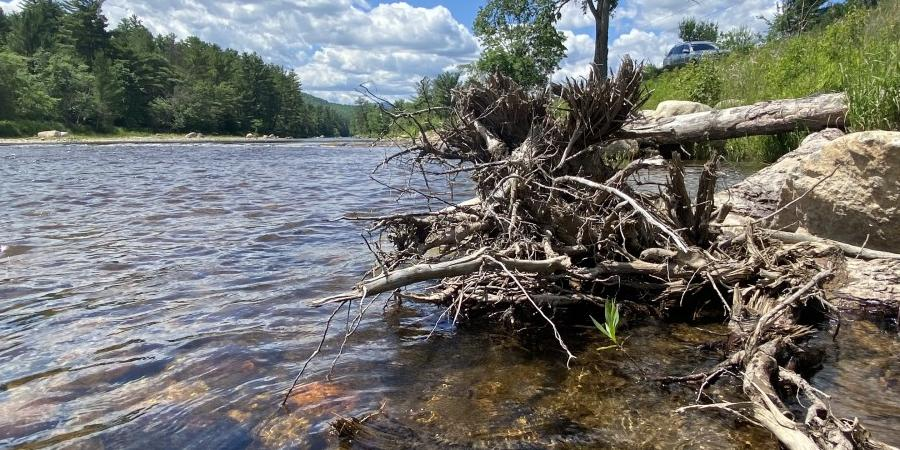 a shore line on the Ausable river