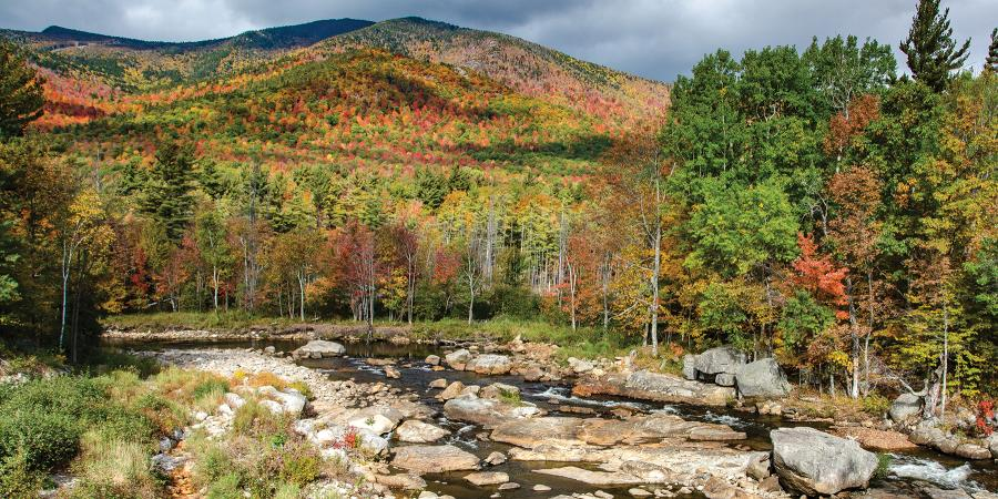Caring for the Ausable River